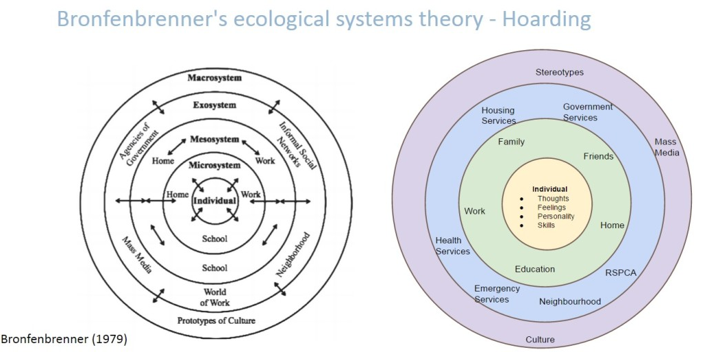 Hoarding Disorder Ecological Model