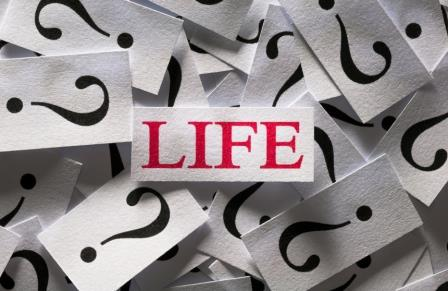 Questions about the Life , too many question marks