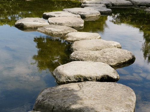 stepping stones for living with uncertainty FM