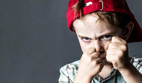 what is developmental trauma VP